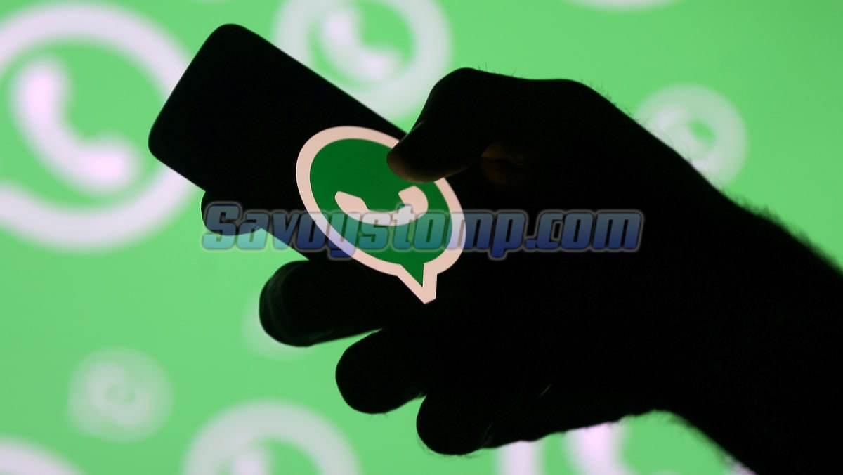 4 Cara Sadap Whatsapp Paling Ampuh dan Efektif