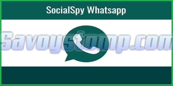 Cara Sadap Whatsapp dengan Social Spy WhatsApp