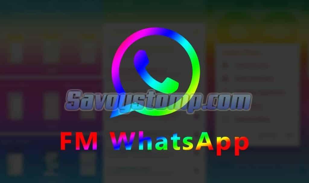 Apa-itu-fmwhatsapp
