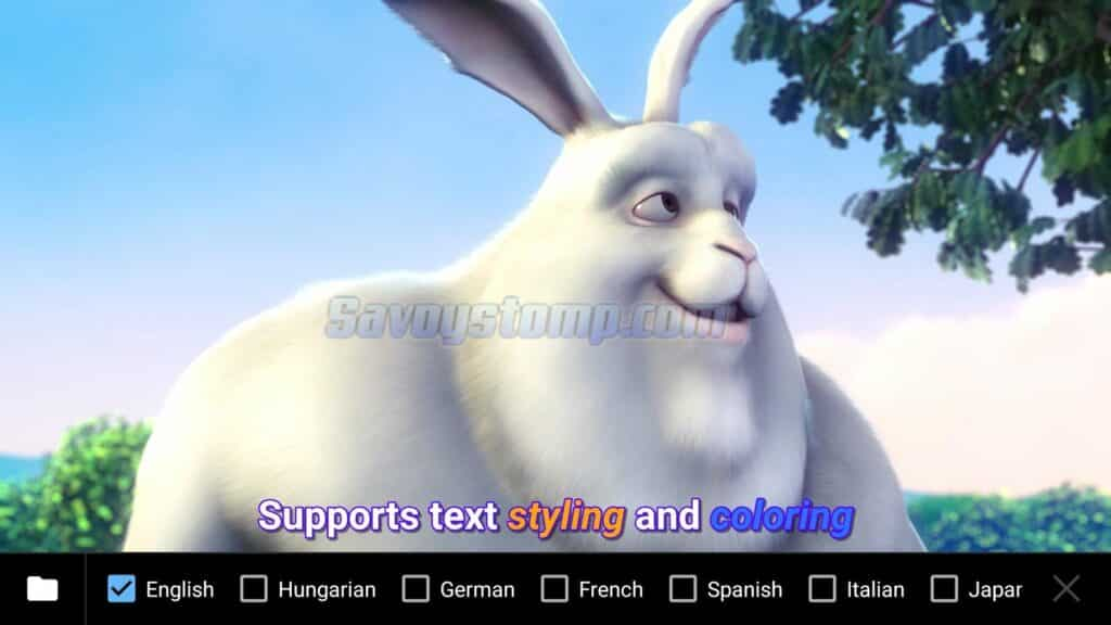 Custom-Subtitle