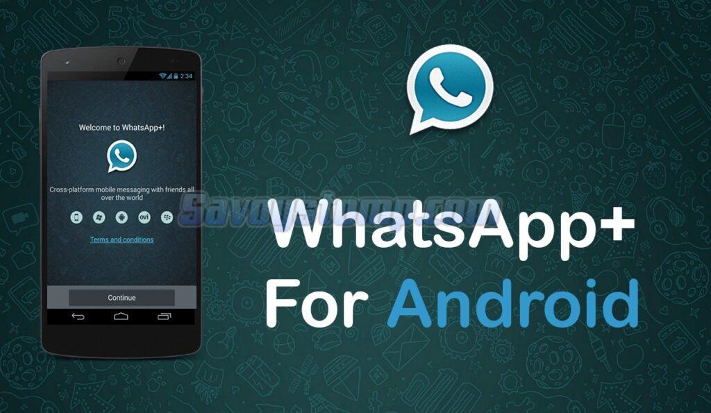 Perbedaan-WhatsApp-Plus-dengan-WhatsApp-Resmi