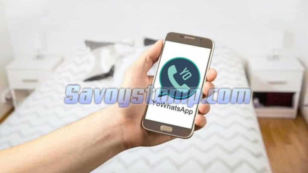 Perbedaan-YoWhatsApp-dengan-WhatsApp-Resmi