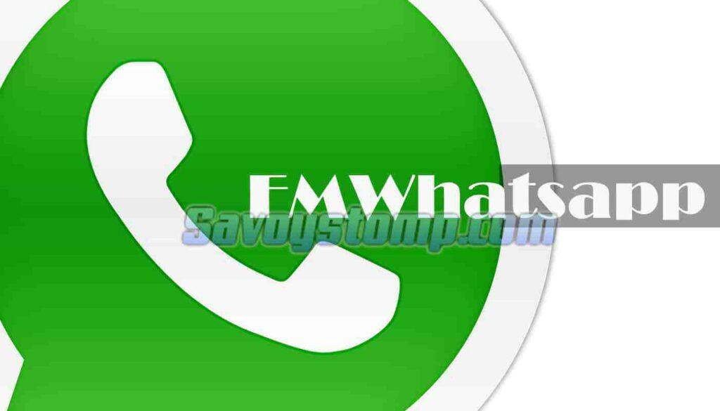 Spesifikasi-dan-Link-Download-Aplikasi-fmwhatsapp